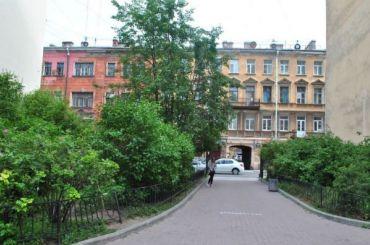 «Единая Россия» отказалась защищать зеленые насаждения в Петербурге