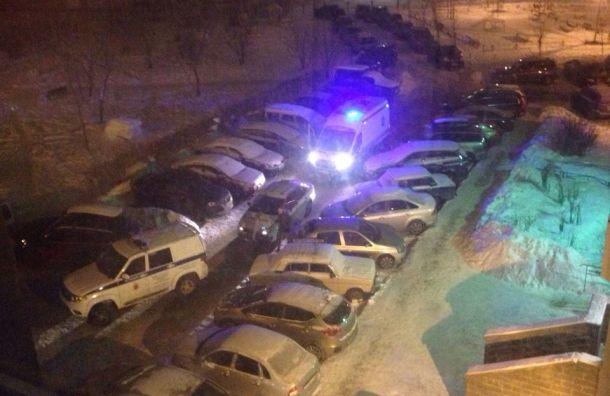 Пьяный петербуржец напал сножом надевушку вПриморском районе