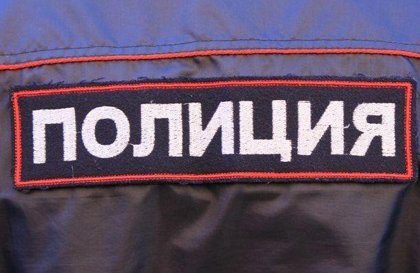 Мигранты ограбили американского туриста вцентре Петербурга
