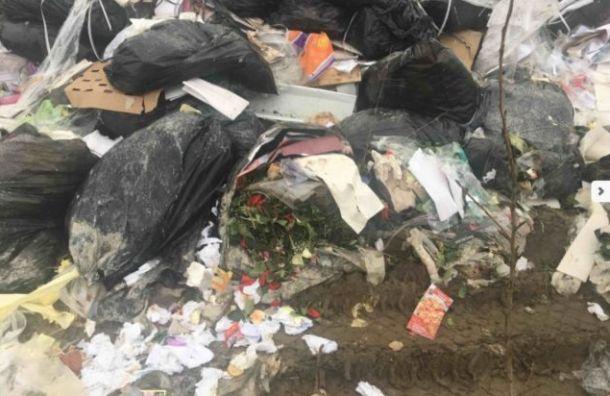 Власти пообещали активистам убрать свалку вНевском районе