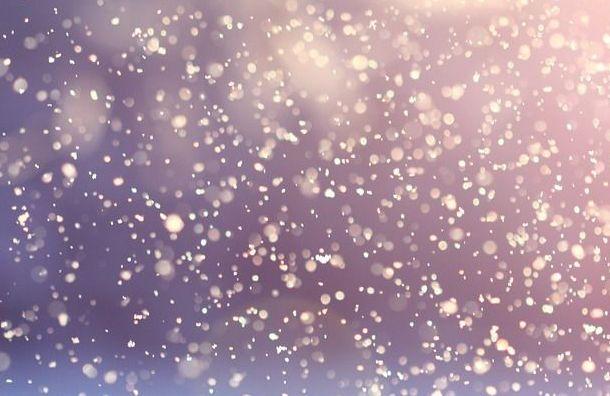 Последний день праздников вПетербурге выдастся снежным