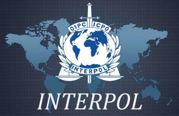 Интерпол задержал вПетербурге украинского кикбоксера