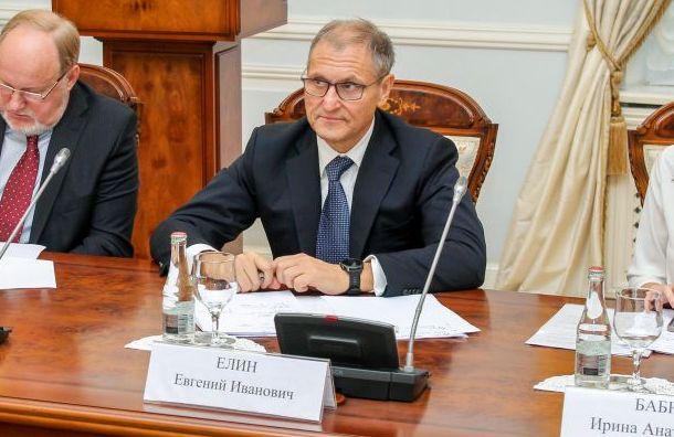 Евгений Елин утвержден вице-губернатором Петербурга