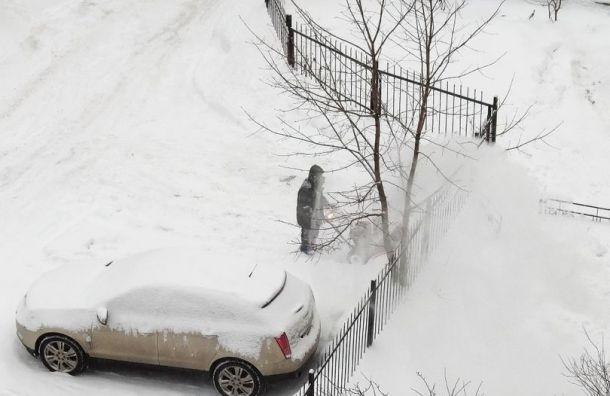 Дворник элитного дома вПетербурге перекидывал снег водвор соседям