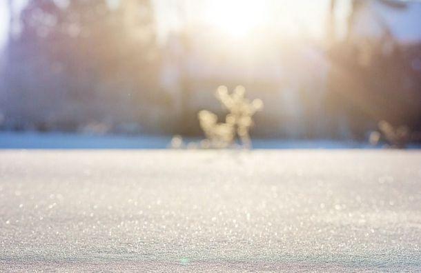 Синоптики обещают выходные вПетербурге без снегопада