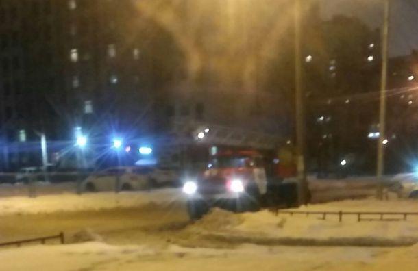 Спасатели потушили пожары втрех районах Петербурга
