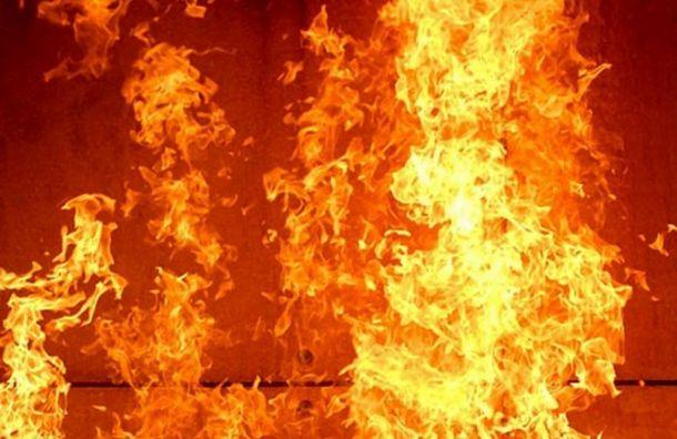Двух человек эвакуировали изквартиры наНаличной улице