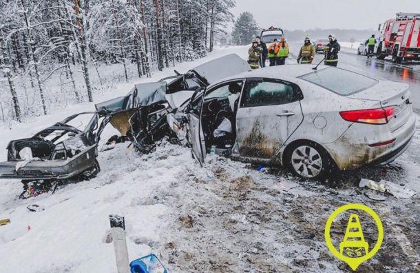 Четыре человека погибли ваварии на«Коле» вЛенобласти