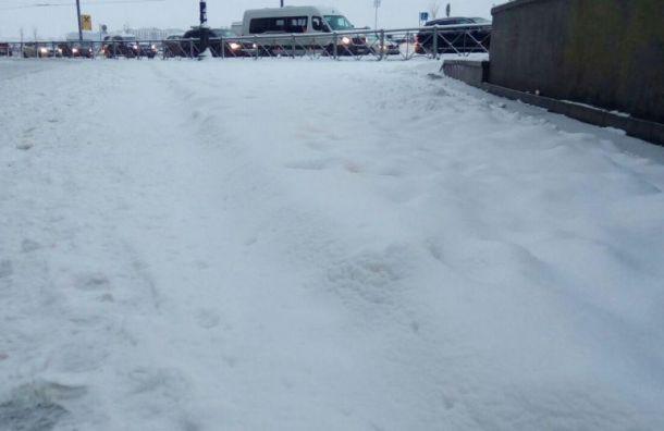 Полицейские обыскали типографию из-за плакатов оплохой уборке снега