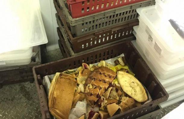Прокуратура нашла тараканов нахлебозаводе вСестрорецке
