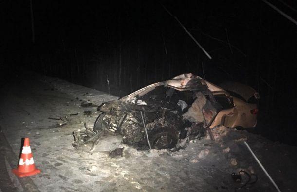Мужчина погиб вжесткой аварии вЛенобласти