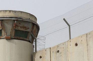 ВЭстонии дан старт строительству стены награнице сРоссией
