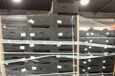 Более 16 тонн яблок изПольши уничтожили вПетербурге