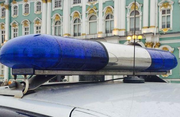 Петербуржец Виталий соблазнил 14-летнюю девочку изГатчины