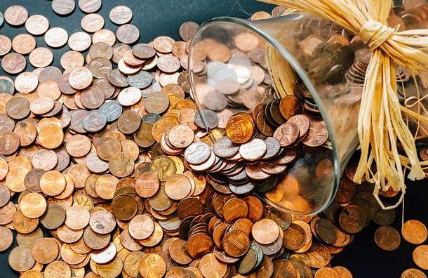 Запетербуржцами закрепят право участвовать враспределении бюджета