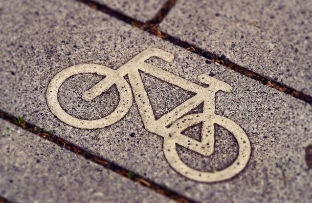 Велодорожка соединит Славянку с«Царским Селом»