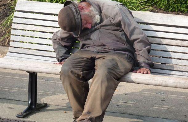Дополнительные пункты обогрева для бездомных появятся вПетербурге