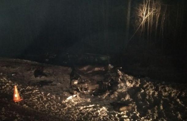 Погибла женщина ипострадали дети вДТП натрассе «Кола»