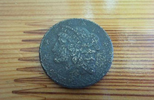 Житель Петербурга продает редчайшую монету за1 млн рублей