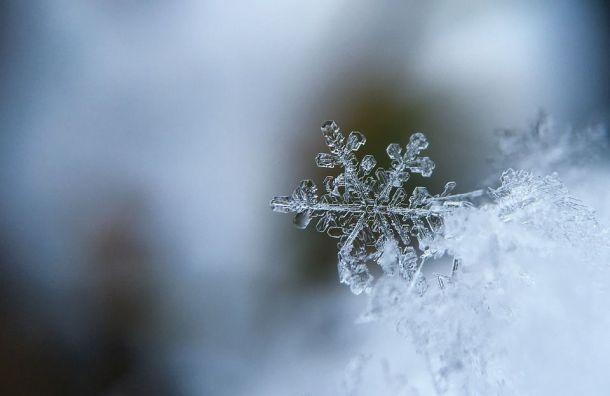 Петербуржцев ждет сильный ветер имокрый снег
