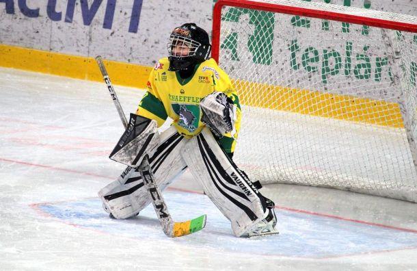 «День защитника Отечества»: хоккейные турниры для детей 7−8 лет
