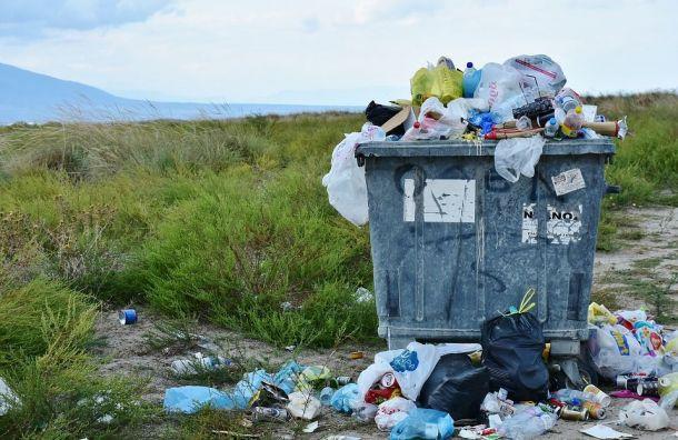 Россияне будут всреднем платить 1,2 тысячи рублей завывоз мусора
