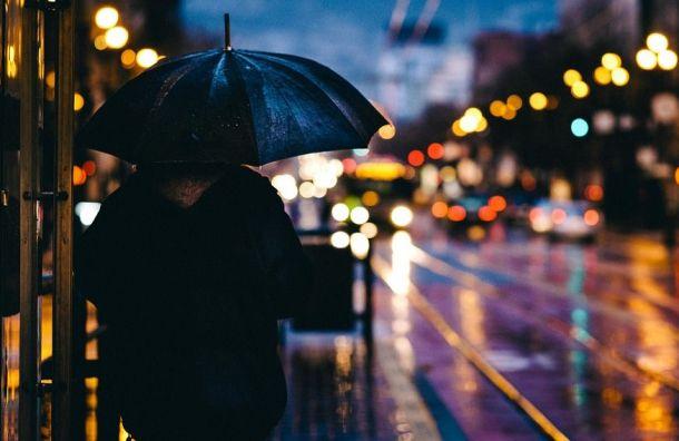 МЧС предупредило петербуржцев осильном ветре сдождем
