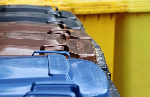Петербург пообещали очистить отмусора занеделю