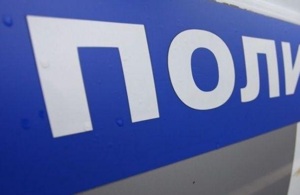 Дело стажера «Эха Москвы вПетербурге» перенесли из-за «господина полицейского»