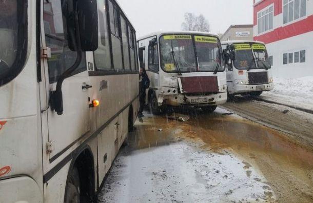 Две маршрутки иавтобус столкнулись вМурине
