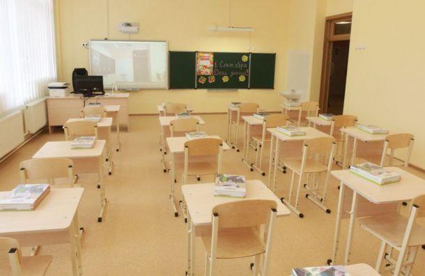 Смольный выделит субсидии насодержание 11 школ идетсадов вПушкине