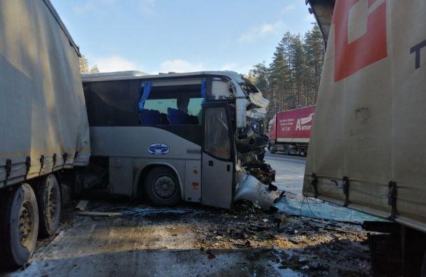 Стали известны подробности смертельного ДТП савтобусом на«Коле»