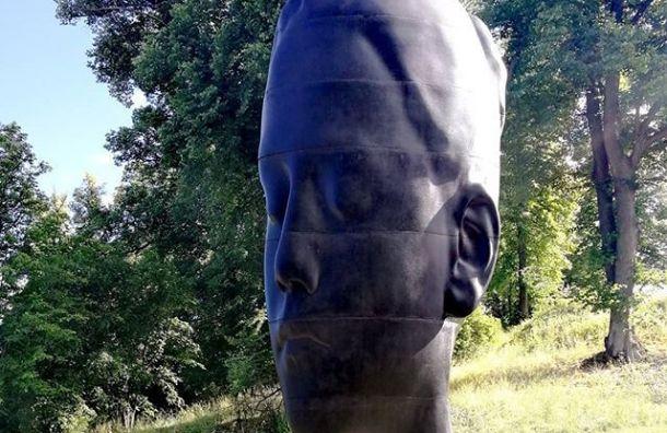 Плоская голова появится летом водворе Эрмитажа