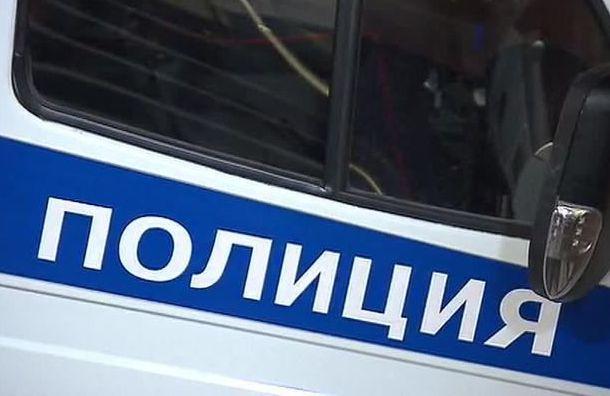 Приемную дочь петербуржца изнасиловал подросток
