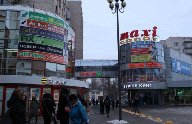Ветер уронил рекламный щит надевушку около «Приморской»