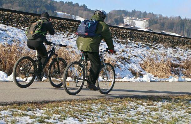 Велодорожку проложат кшколе искусств вЛомоносове