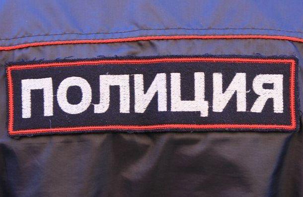Полиция задержала впетербургском штабе Навального активиста «Весны»