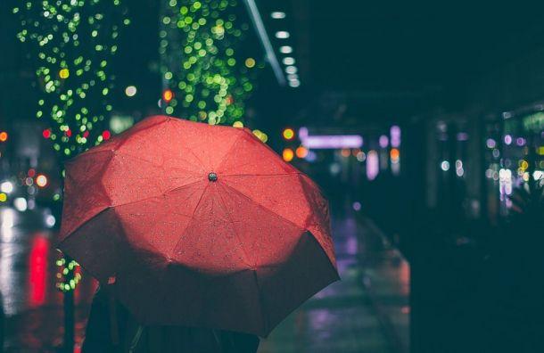 Петербуржцев ожидают дождливые выходные