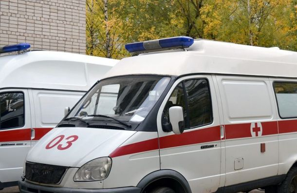 Четырехлетний малыш разбил голову олед вцентре Петербурга