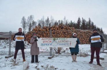 ЖителиЖК «Новоорловский» провели акцию против вырубки леса