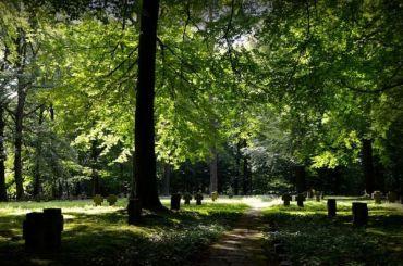 Места захоронений сотен пленных изСССР иПольши нашли вГермании
