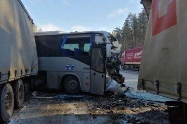 ДТП савтобусом натрассе «Кола»: пострадали 14 человек