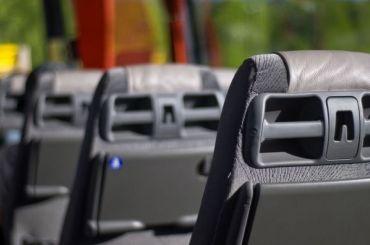Жительница Латвии напала наводителя автобуса заответ нарусском