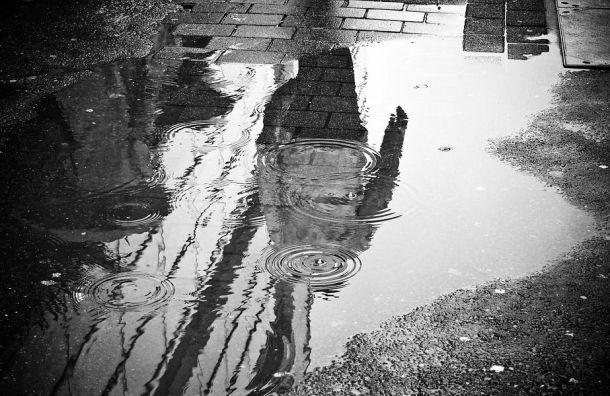 Петербуржцам ввоскресенье обещают дождь игололедицу