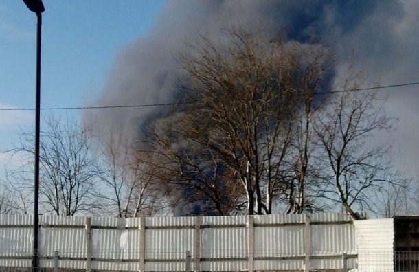 Сильный пожар тушили вангаре попереработке мусора