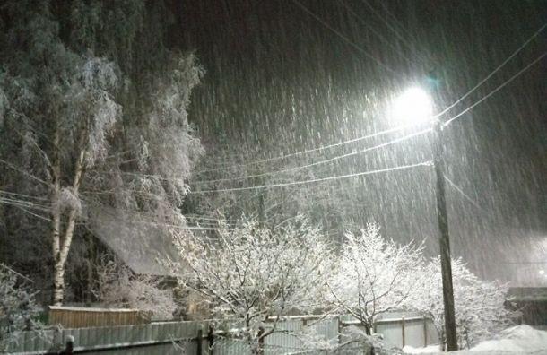 Первый апрельский снег выпал вПетербурге