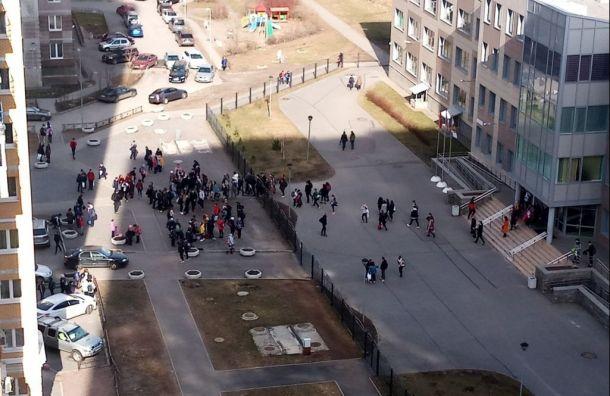 Эвакуированы школы Красносельского района