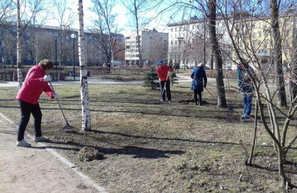 Жители Васильевского острова вышли навесеннюю уборку