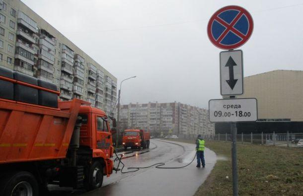 Петербургские дорожники очистили после зимы 965 улиц