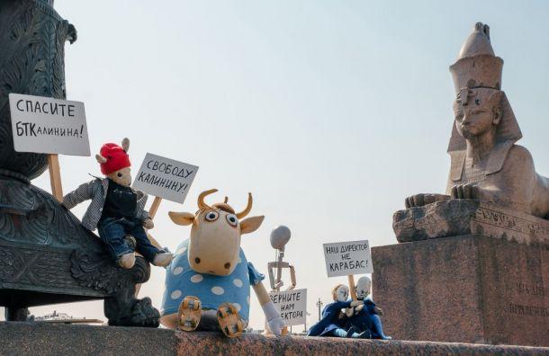 Куклы заступились задиректора БТК